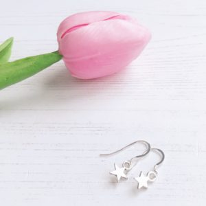 janmary earrings small stars