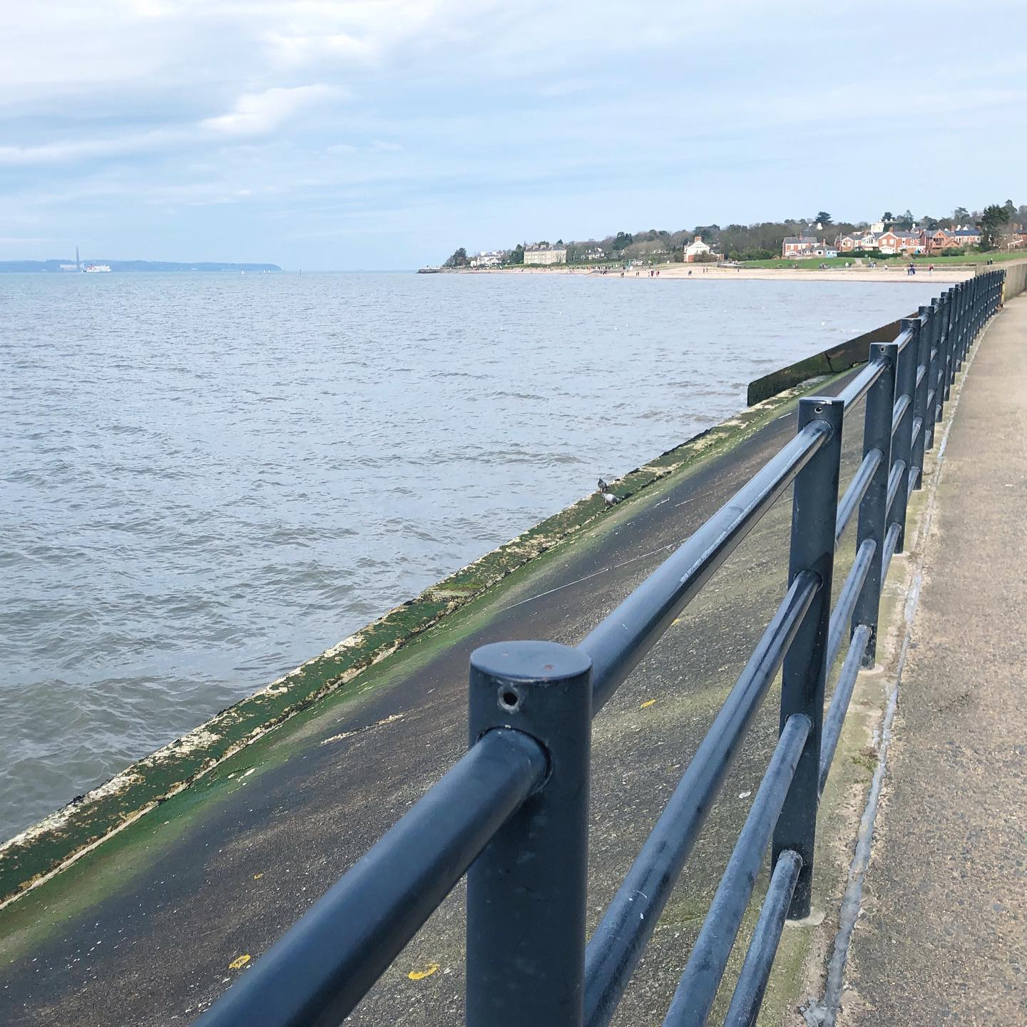A Sunday stroll by the sea in Holywood today..... missing the north coast but will have to be content with this coastal fix for now . How has your Sunday been?