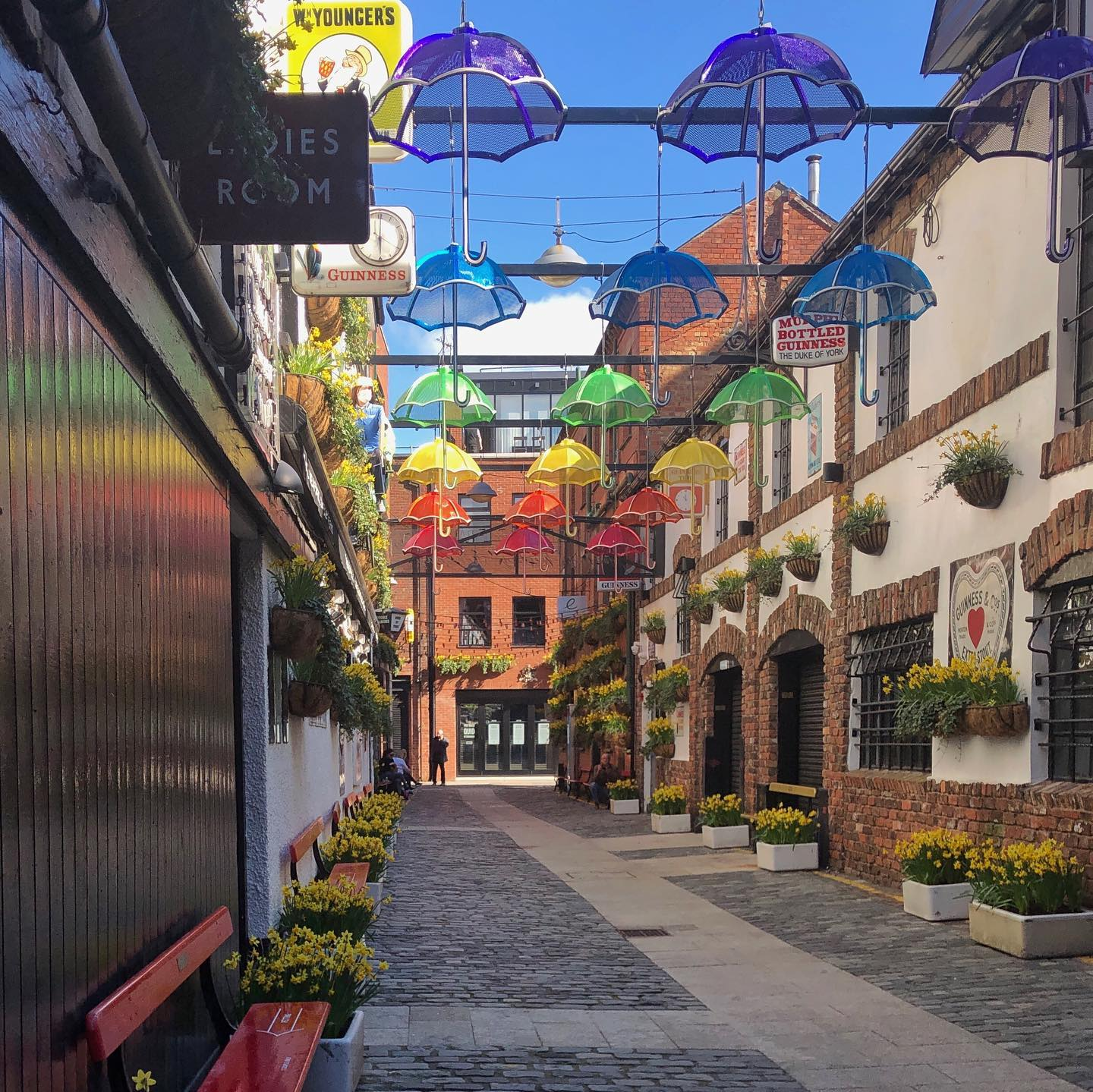 All the colours in the Cathedral Quarter, Belfast